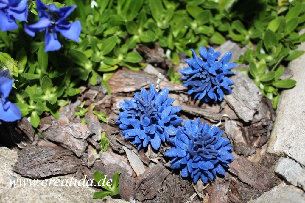 kornblumen 6