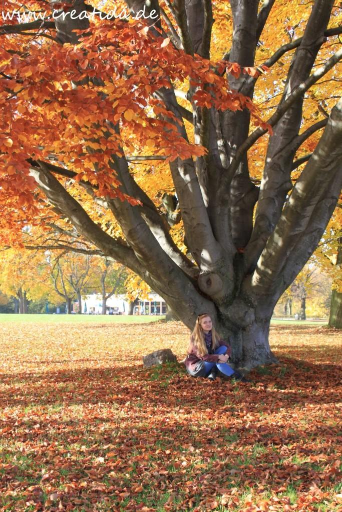 Herbst Kassel